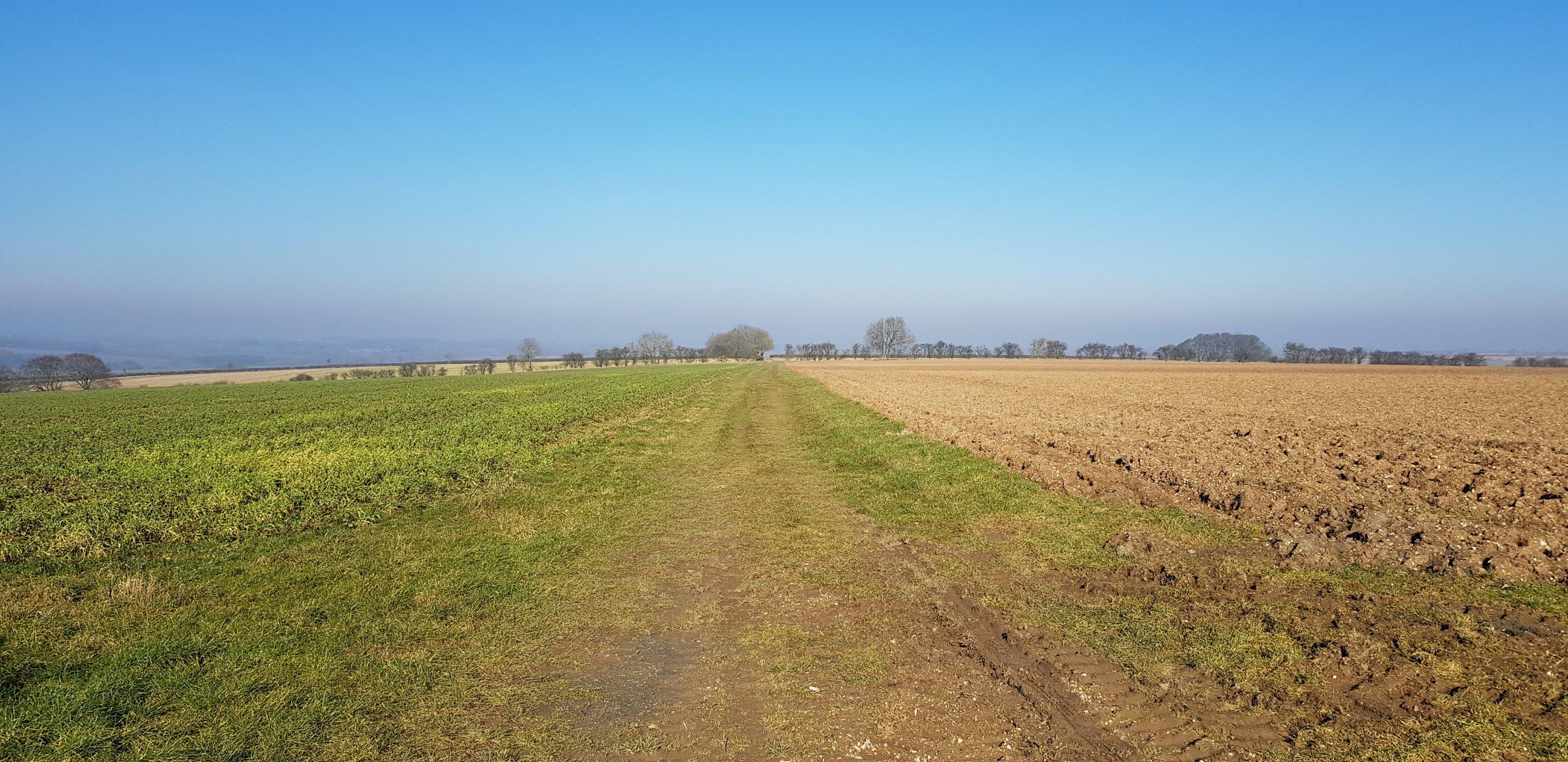 Bridleway across farmland